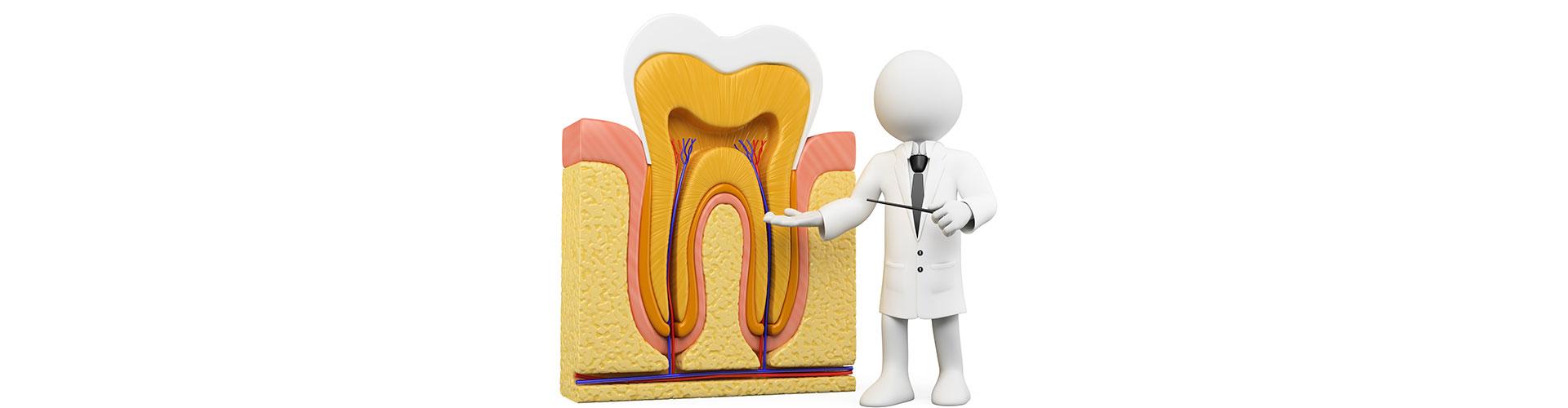 Dental educational videos